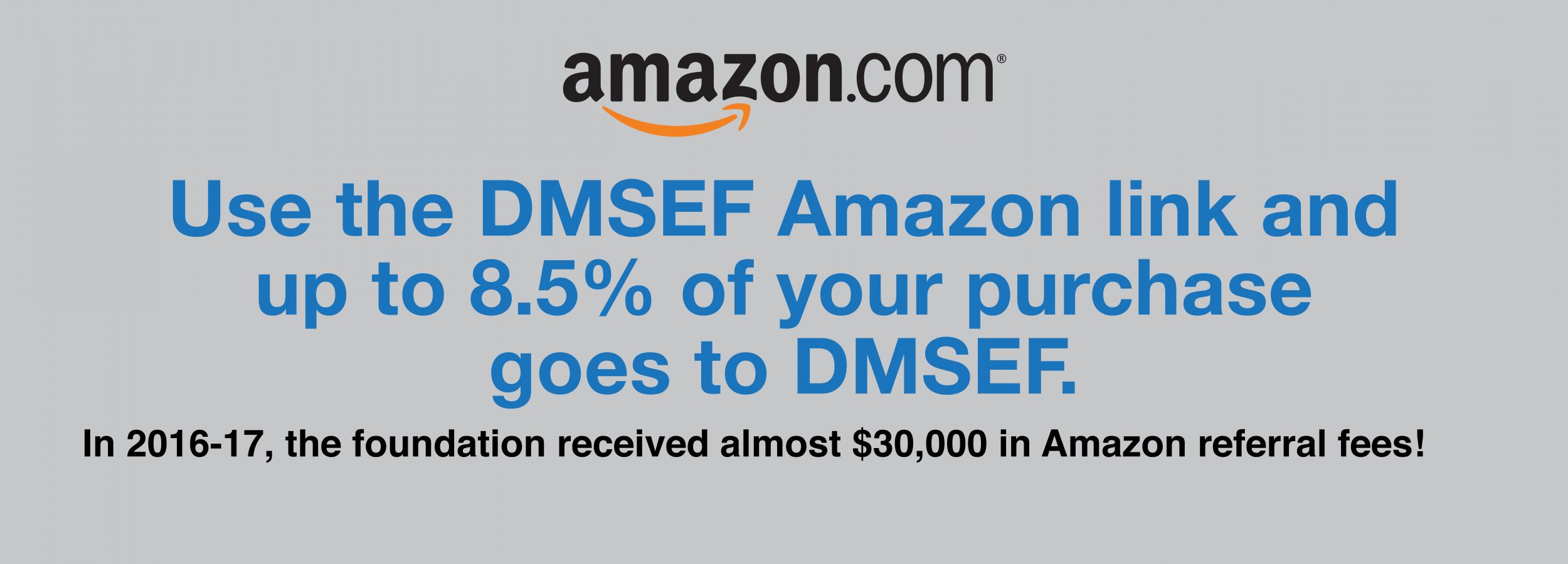 DMSEF website Slide Amazon 2017